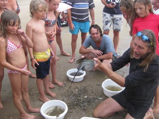 camping_de_lakens_recreatie_activiteit_zee_korren_kinderen